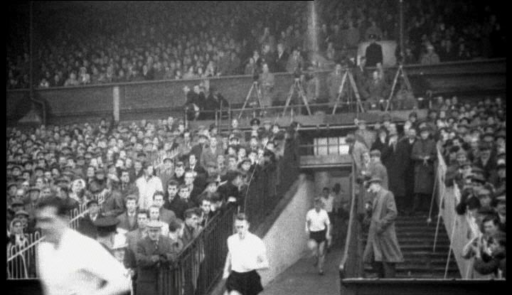 Owls Fans Amp Crowd Pictures Sheffield Wednesday Fc