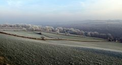A frosty morning in Worrall