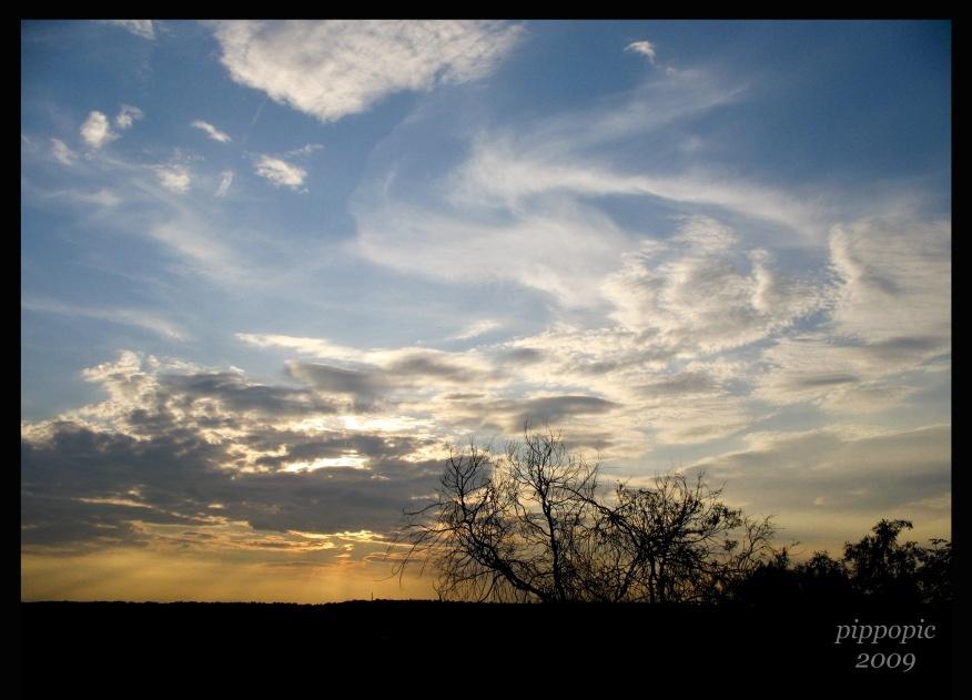 Near sunset