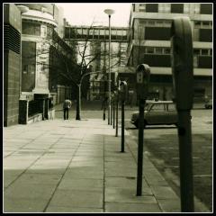 Holly Street