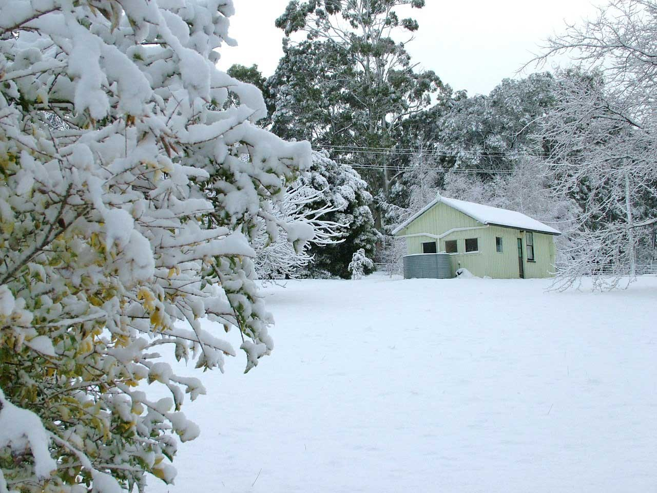 snow-#1.jpg