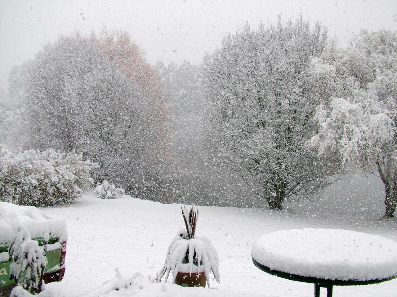 snow-#3.jpg