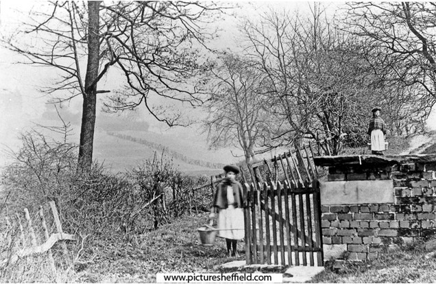 Willd Well 1900S.jpg