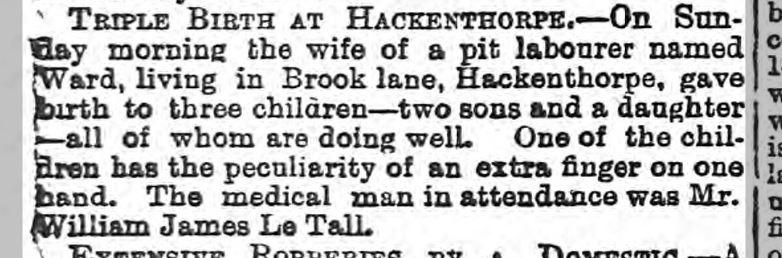 Sheffield Independent 15 June 1880.JPG