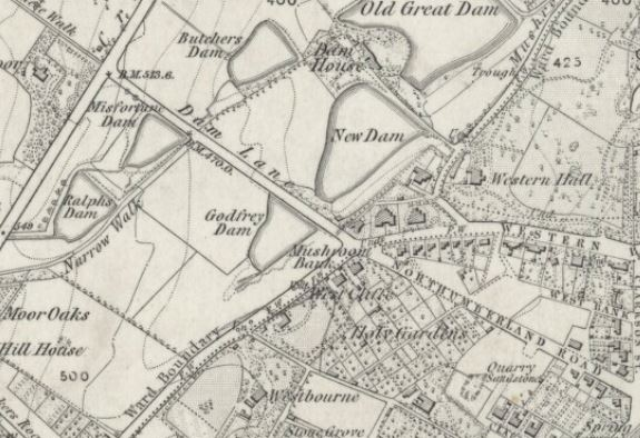 Dam Lane 1855.JPG