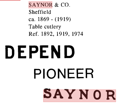 saynor_and_co.png