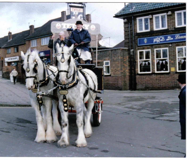 tetleys horses.jpg